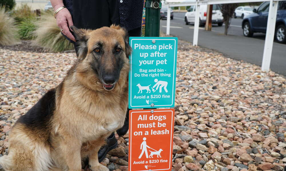 Council is in the process of rolling out new signs (pictured) around popular reserves and open public spaces to remind dog owners of their responsibilities.