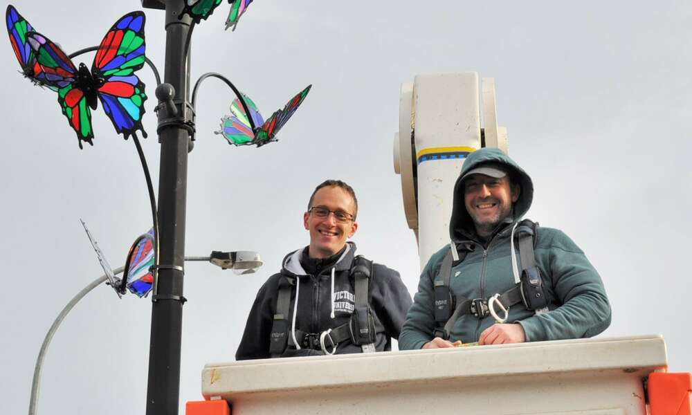 Skunk Control artists Simon Roberts (left) and Nick Athanasiou installing the butterflies.